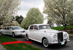 wedding-transport